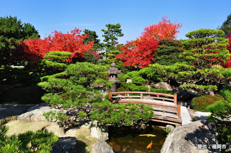②大濠公園日本庭園